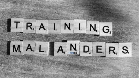 Training, Coaching & Seminare | Unternehmensberatung FNCT
